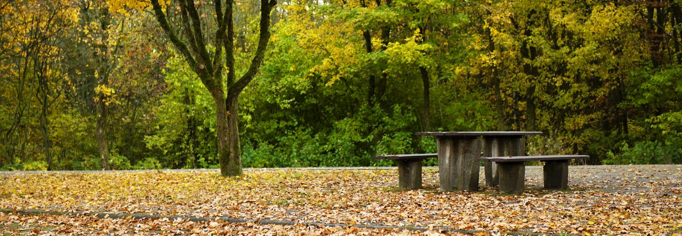 WSherry-Autumn-bench